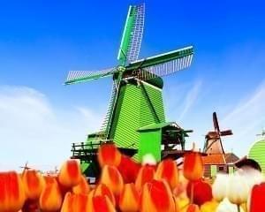 Nederlandse Porno Sites