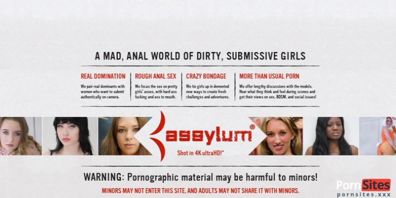Screenshot Assylum