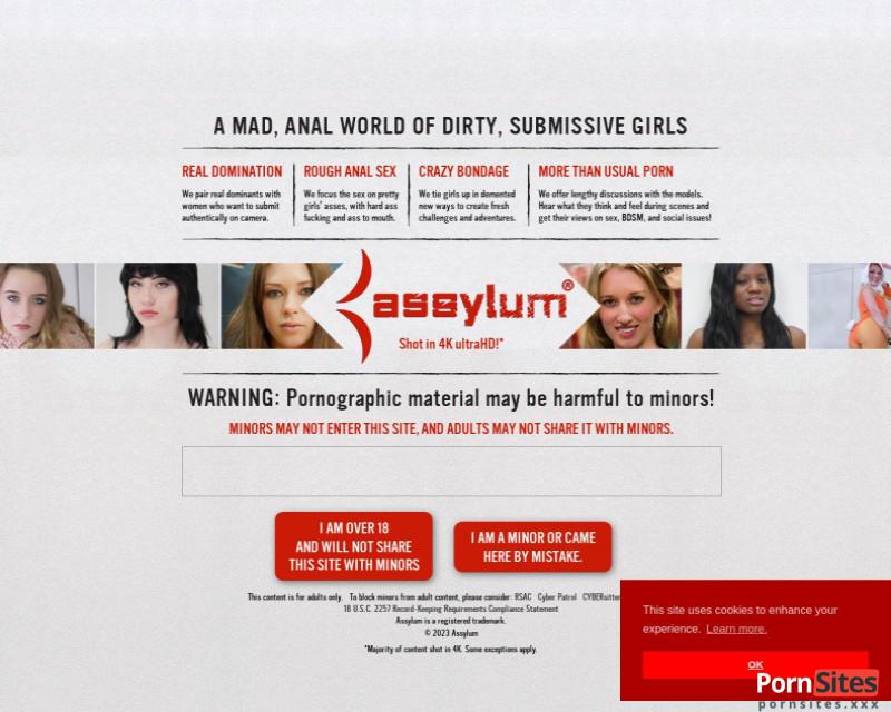 Assylum Website From 23. January 2021