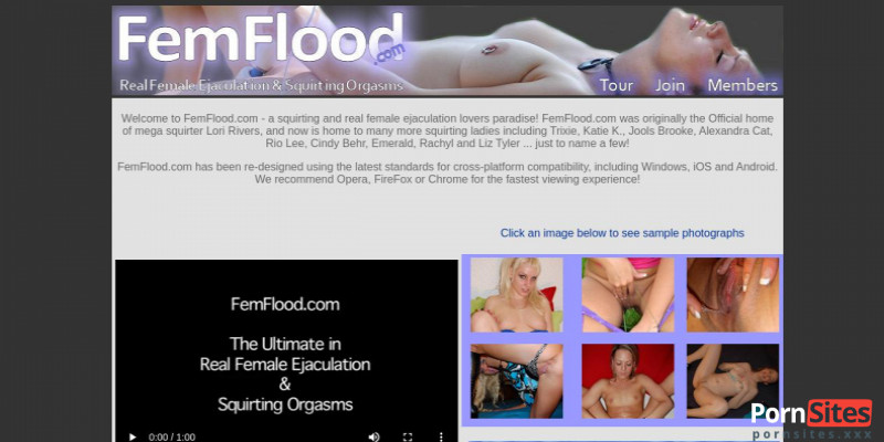 Screenshot FemFlood