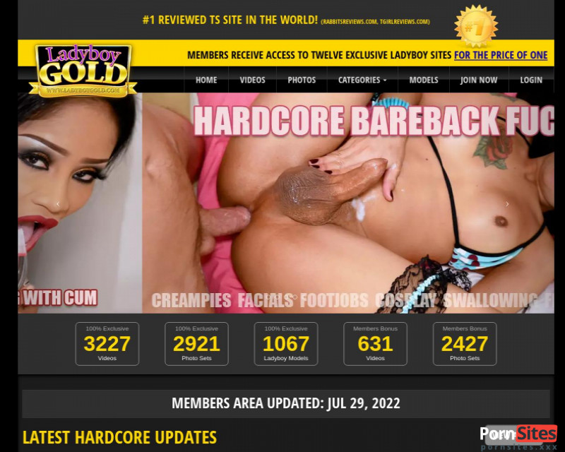 Ladyboy Gold Website From  4. March 2021