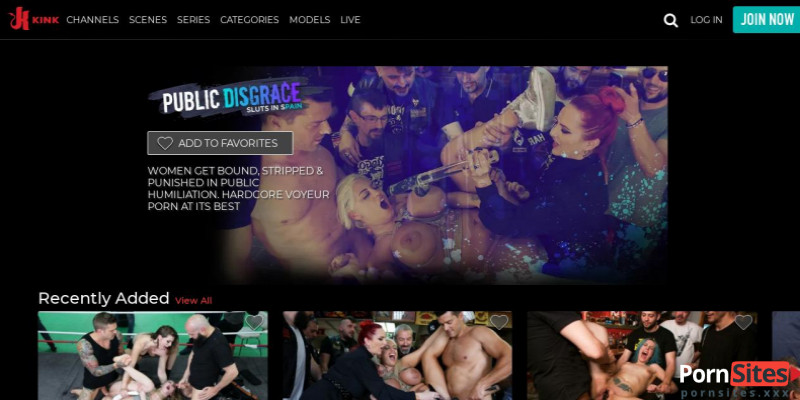 Screenshot Public Disgrace