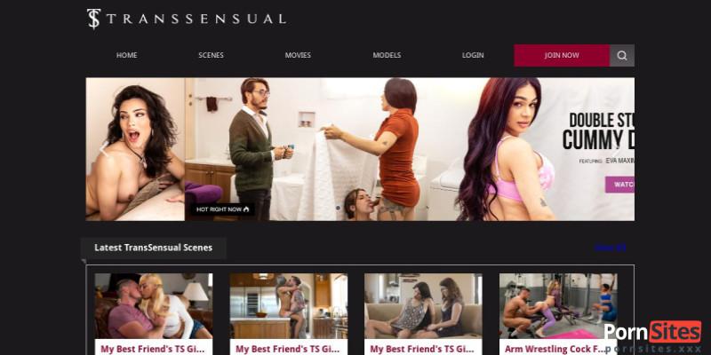 Screenshot TransSensual