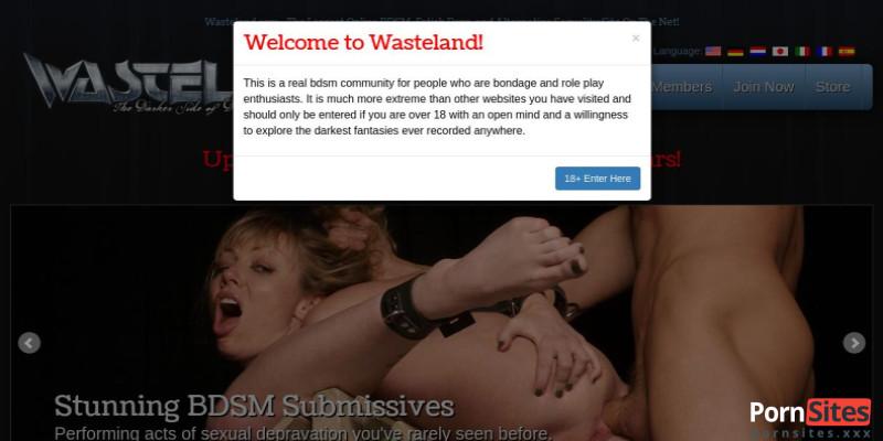 Screenshot Wasteland